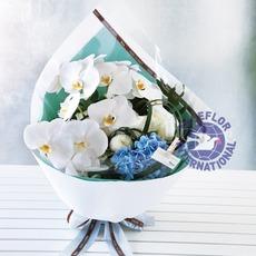 [대만]꽃다발-9