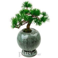 도자기분재소나무A